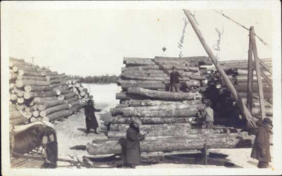 Photograph of logging camp near Ogema, Wisconsin, 1914. From the Col. Robert E. Swanson family papers, Swenson Swedish Immigration Research Center.