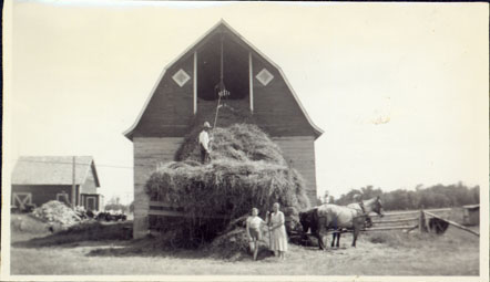 Photograph of S. A. Swanson loading hay into the barn at his farm in Ogema, Wisconsin, 1938. From the Col. Robert E. Swanson family papers, Swenson Swedish Immigration Research Center.